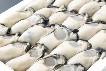 写真:むき身牡蠣