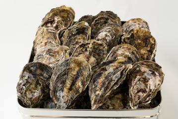 写真:殻付き牡蠣