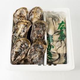 広島産生牡蠣 むき身500gと殻付き10個セット